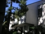$990 1 br- 2nd floor, water paid! - move in now & 1st month rent free