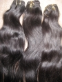 The best in indian hair