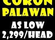 Darayonan Great Adventure Coron package Deal