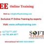 obiee online training, obiee 11g online training.