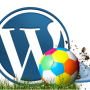 Top Guaranteed Wordpress Web Development Services