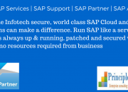 SAP | SAP Services | SAP Support | SAP Partner | SAP America | SAP Houston | SAP Texas