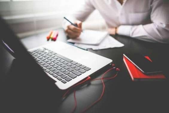 Remote business developer