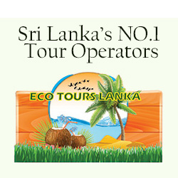 *65% off * sri lanka tour packages!!