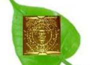 Buy now mahavidya chinnamasta copper yantra