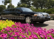 Fair lawn nj new jersey limo service 201-794-0342