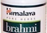 Brahmi - bacopa monnieri - relieve stress - increase memory