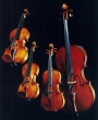 String Ensemble for Your Special Event