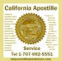24 Hour Apostille Service, Spanish translation, Notary