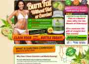 Garcinia cambogia: burn and eliminate fat without working out