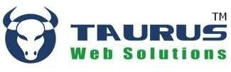 Creative & custom web design, brochure design india