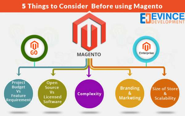 Magento website design and development company