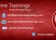 Sap bpc -global online trainings