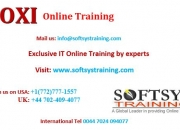 Business objects online training, boxi training online.