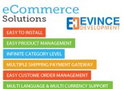 Ecommerce magento web development and support