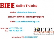 obiee online training, obiee 11g online training.