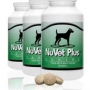 Pet  Nutrition and Healthcare Supplements
