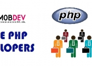 Hire fortified php developers to break through the high competition of market