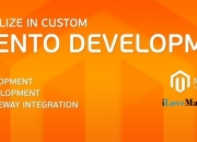 Custom Magento Website Development Company