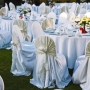 Worried About Chair Appearance? Find Out Best Chair Cover with Us