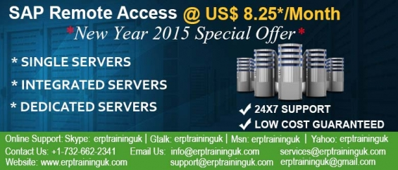 Sap remote access @ us$ 8.25*/month/user- new year special offer hurry up