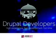 Hire drupal web developers for the excellent ecommerce store experience