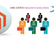 Professional magento development company in usa
