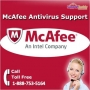 Reach SupportBuddy Professionals by Calling @ McAfee Phone Number: 1-888-753-5164