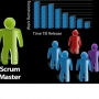 PMP & Scrum Master Certification Training Program