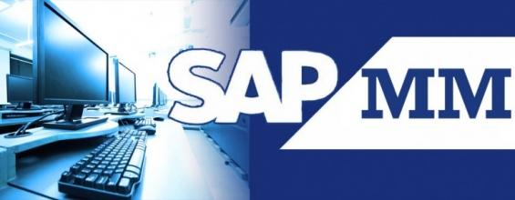Sap material management online training
