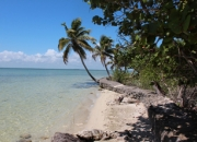 Affordable Residential Lots for Sale in Corozal, Belize!
