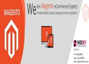 Magento Development Company: Raise Your eCommerce Deals Up To Another Level