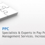 Hire Adwords Certified PPC Consultants For Correct PPC Campaign