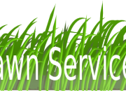 Lawn care services for making eye pleasing lawn of your home