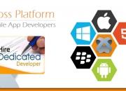 Hire cross platform mobile app developer - imobdev technologies