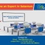 World's Best Selenium Online Training at ITeLearn