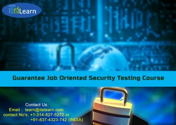 Best security testing training online platform