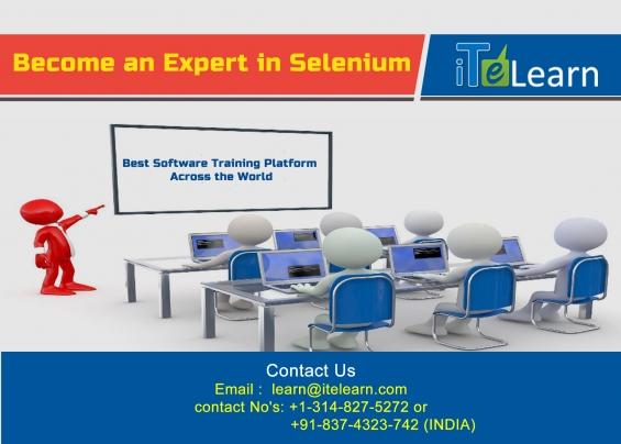 Professional selenium webdriver testing training