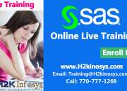 SAS Online Training Classes and Placement Assistance