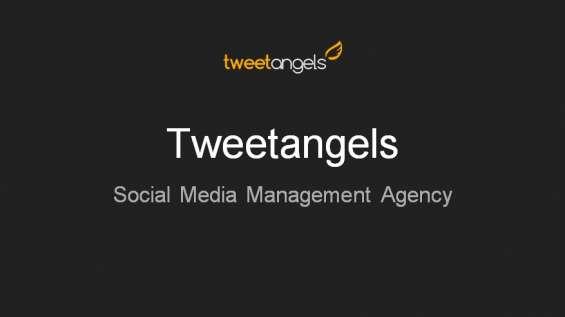 Social media management business