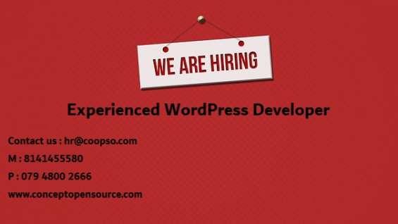 Hire experienced wordpress developer