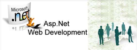 Asp net application company