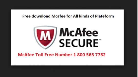 Mcafee helpline, 1 800 565 7782 mcafee antivirus