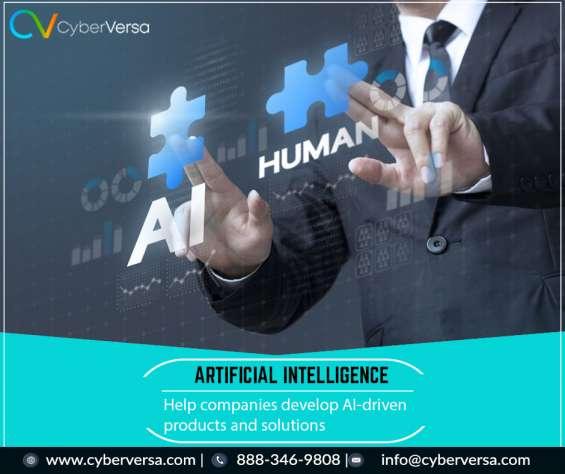 Agile artificial intelligence consultant miami